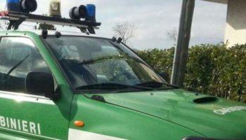 Carabinieri-Forestale-2-800×445